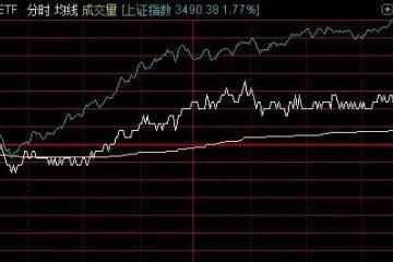 大白马被券商齐吼买入结果股价跌到腰斩基金经理最后一刻才加仓
